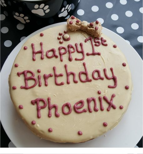 Stupendous Large Dog Birthday Cake Funny Birthday Cards Online Benoljebrpdamsfinfo