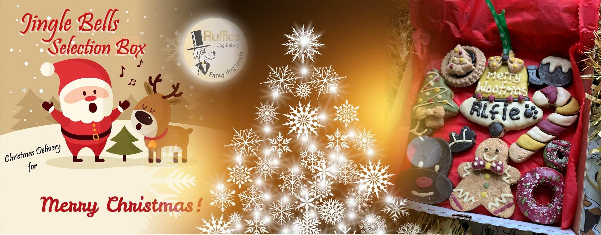 Christmas Dog Treat - Jingle Bells Selection Box